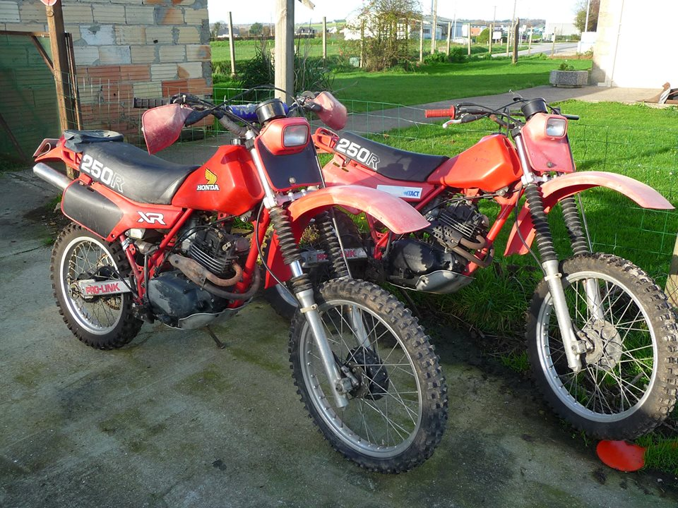 Honda XR250r – 1981 | XR Kings